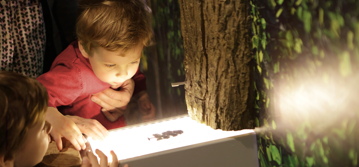 Museum visit - child looking carefully at lights