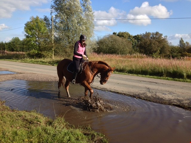 HomeServe employee riding her horse