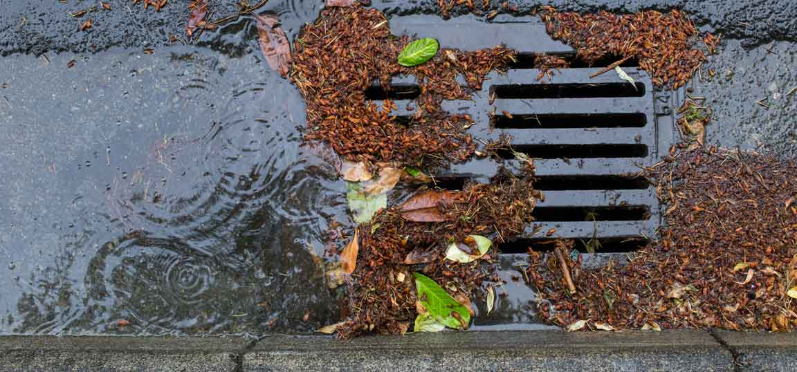 Blocked storm drain
